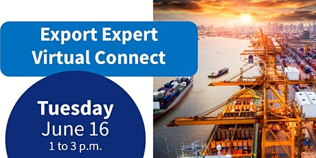 Live Webinar - Export Expert Virtual Connect tickets