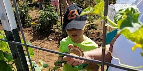 Junior Master Gardener Day Camp tickets