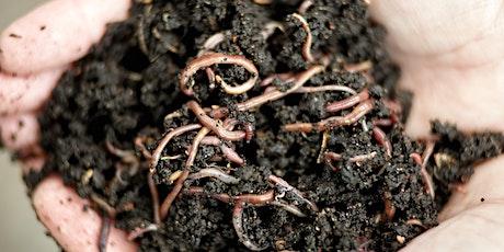 Worm Farming Solutions -  Live Webinar tickets