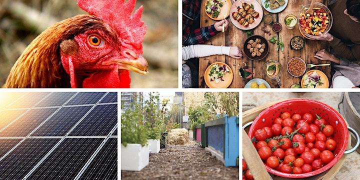 Sustainability course image