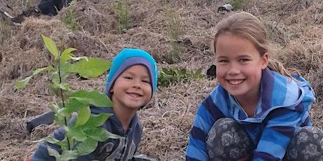 Planting Day, Tawharanui Regional Park tickets