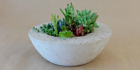 Concrete Pot Workshops + Succulent Care tickets