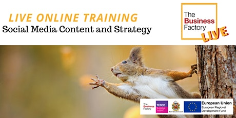 LIVE ONLINE - Social Media Content & Strategy Workshop tickets