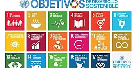 Objetivos de Desarrollo Sostenible: 17 tareas pendientes de la humanidad entradas