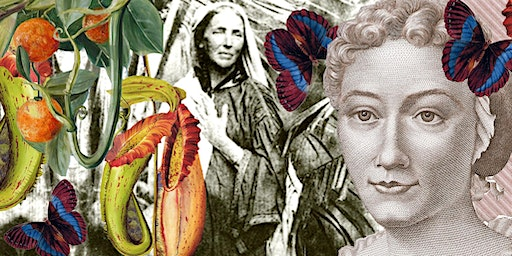 A Feminist's Guide to Botany