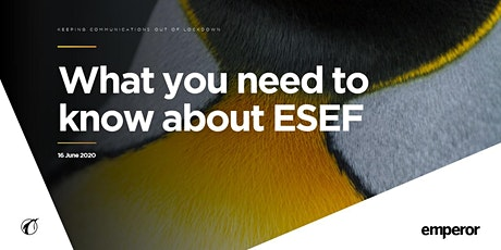 What you need to know about ESEF tickets