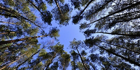 Remote Environmental Management Training - ISO 14001 biglietti
