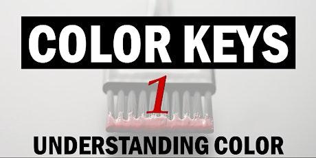 L'Oréal Professionnel  Color Keys 1 entradas