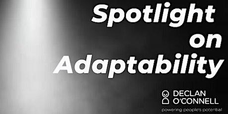 Spotlight on Adaptability tickets