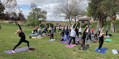 Yoga in the Park @ Bloomingcamp Ranch tickets