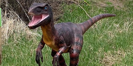 Dinosaur Drive-Thru: Sunday June 7th  - COVID 19 Safe tickets