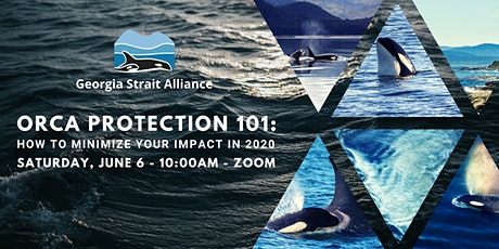Orca Protection 101: How to Minimize Your Impact in 2020 tickets