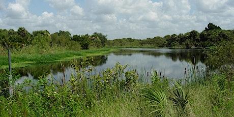 Freshwater Ecology: a Florida Master Naturalist preview (webinar) billets