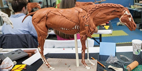 EQUIKEN® Equine CoreData™1 Anatomy Workshop tickets