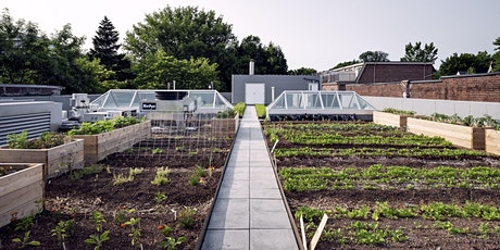 Planting a Summer Food Garden in the City tickets