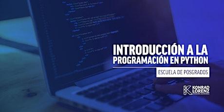 Introducción a la programación en Python entradas