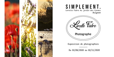 Simplement. Exposition de Photographies billets