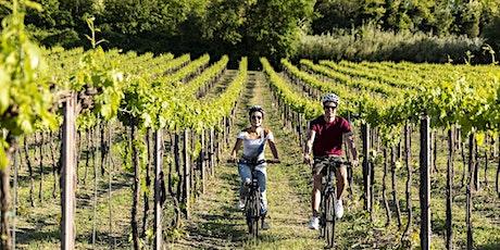 Valconca Wine Experience - E-Bike tour nella cantina Enio Ottaviani biglietti