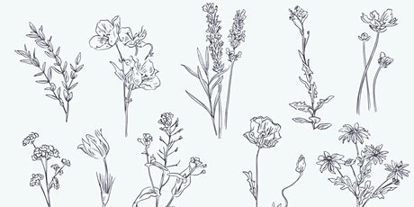 Botanical Line Drawing tickets