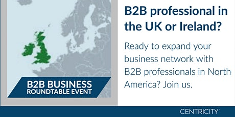 Online Business Roundtable for B2B Professionals  |  Connect Globally tickets