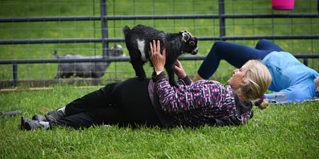 Feels Like OM Baby Goat Yoga tickets