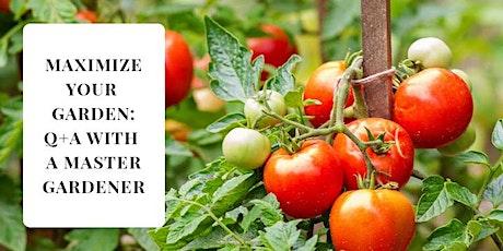 Maximize your Garden: Q&A with a Master Gardener tickets
