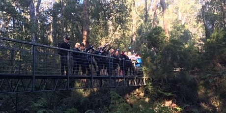 Lorne Overnight Hiking Weekend Adventure tickets