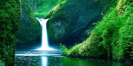 Warum gutes Wasser unser Leben entscheidend verändern kann Tickets