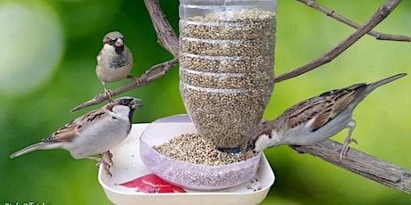 Make Your Own Bird Feeder Kit tickets