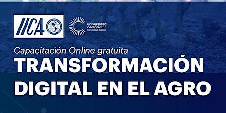 Transformación digital en el Agro entradas