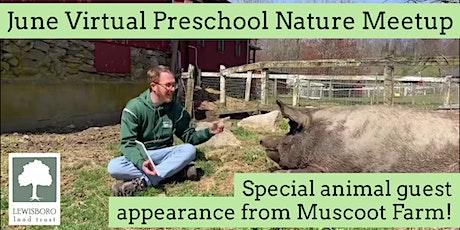 June Preschool Virtual Nature Meetup tickets