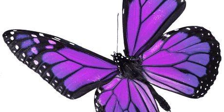 Butterflies of 2020 Graduation Celebration tickets