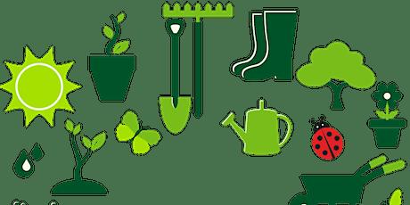 Tīraines dārzi  un parki tickets