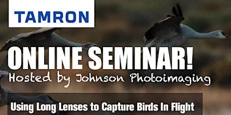 Using Long Lenses to Capture Birds in Flight tickets