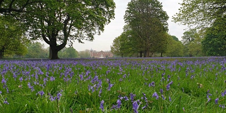 Timed entry to Osterley Park and House (8 June - 14 June) tickets