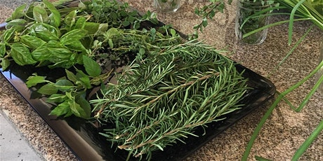 Growing and Cooking: Highlighting Herbs (Online) tickets