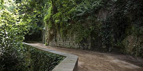 TALLER DE CONFIANZA BASADO EN LA FOTOGRAFÍA: INTRODUCCIÓN entradas