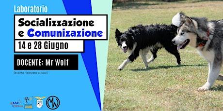 Laboratorio di comunicazione e socializzazione del cane biglietti