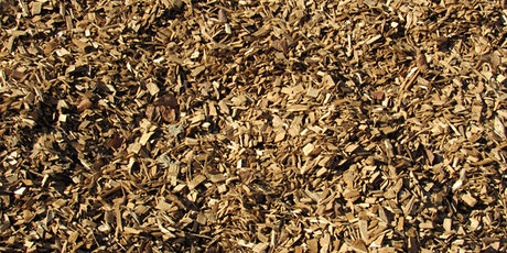3 Wood Fuels & Dry Wood Chip Boiler Systems tickets