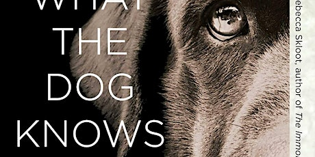End Animal Homelessness with Cat Warren   What the Dog Knows tickets