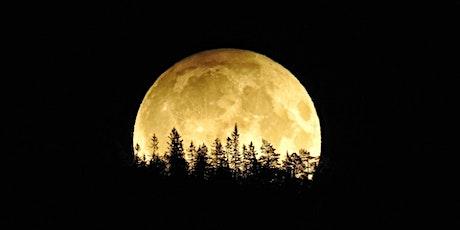 Full Moon Baking: Sourdough Edition [ONLINE] tickets