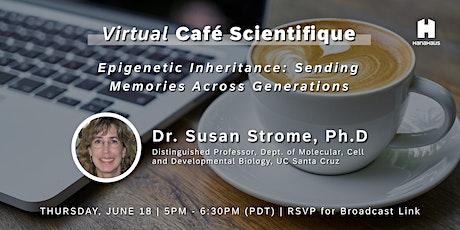 Virtual Café Scientifique | Epigenetic Inheritance tickets