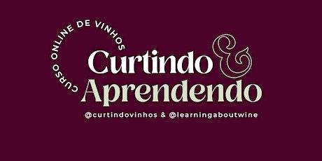 Vinhos: Curtindo & Aprendendo o básico SP/MG/PR/DF/Nordeste ingressos