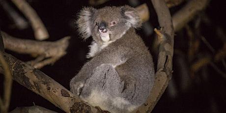 Briars After-Dark Wildlife Walks tickets