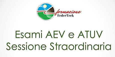 Esame AEV/ATUV Sessione straordinaria biglietti