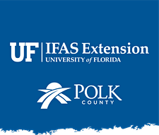 UF/IFAS Extension Polk County Gardening and Landscaping logo