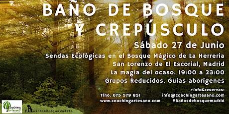 Bosque sáb. 27 Jun - Ocaso Bosque La Herrería El Escorial entradas