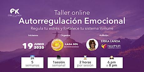 Taller de Auto-Regulación Emocional entradas