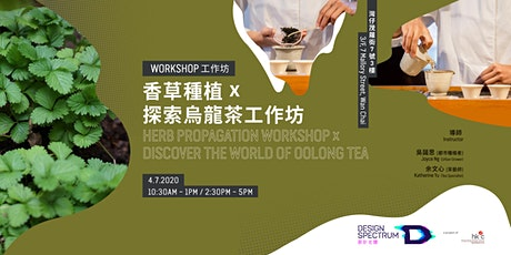 香草種植工作坊 Herb  Workshop x 探索烏龍茶工作坊 Discover the Oolong Tea (Session B) tickets