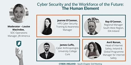 Cyber Ireland South Chapter 3rd Meeting. tickets
